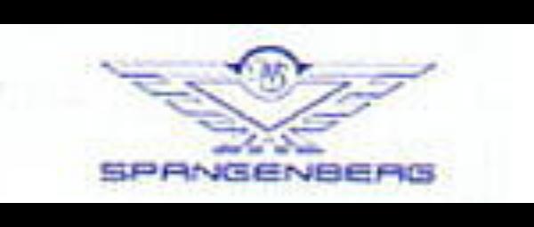 Spangenberg_link